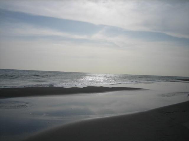 20090309-01.jpg