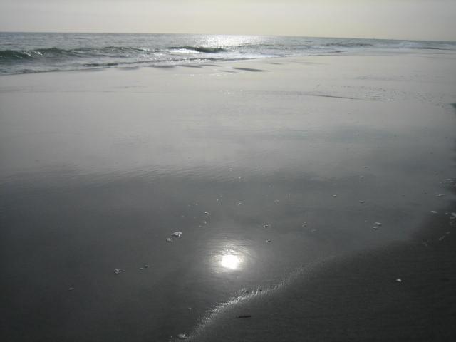 20090309-09.jpg