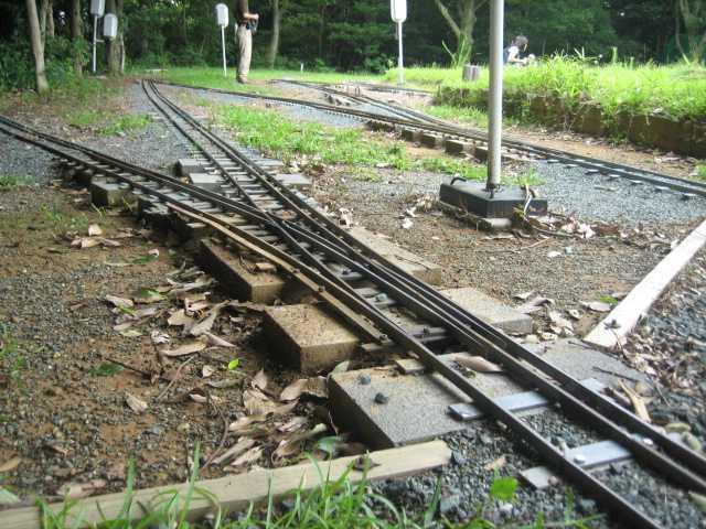 20090720-03.jpg