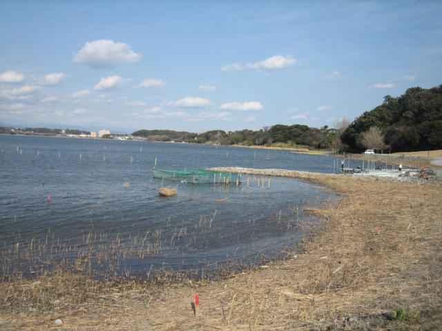 20110131-01.jpg